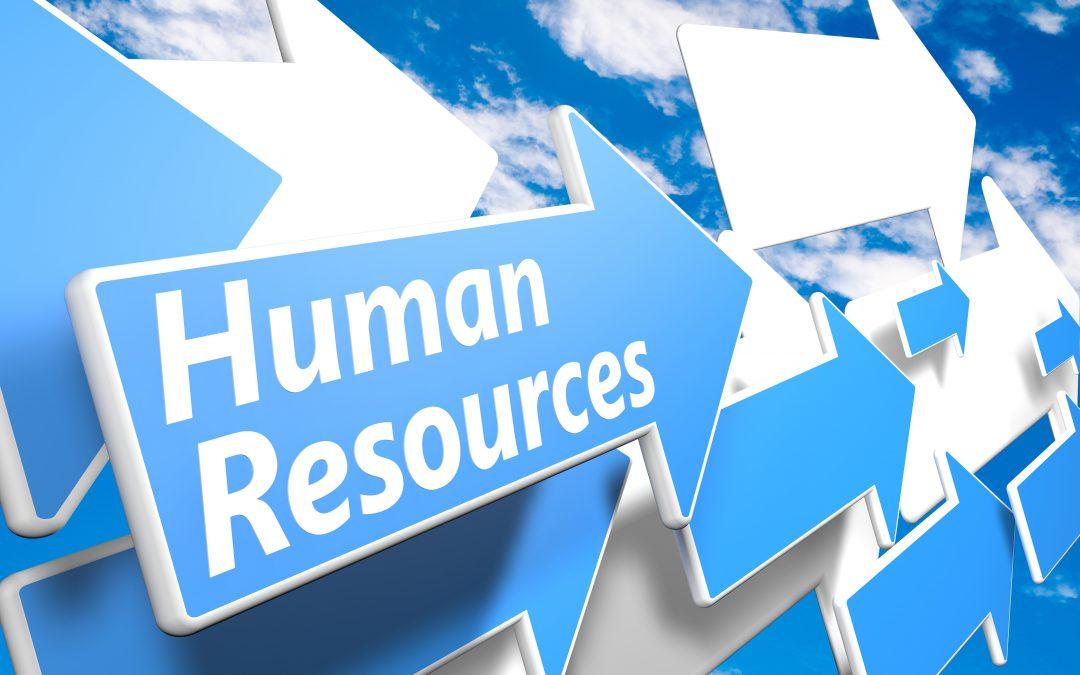 HR in Smaller Organisations